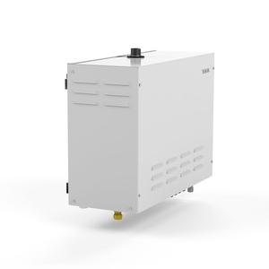 Парогенератор TYLO STEAM COMMERCIAL 9 kW